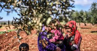 Photo of To fund Syrian militia, Turkey peddles Syrian olive oil as Turkish