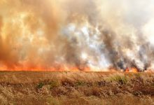 Photo of The Turkish army intentionally set fire to wheat fields in the lands of Ain Issa district