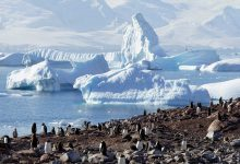 Photo of Researchers .. the Antarctic temperature rises 3 times faster than the rest of the world