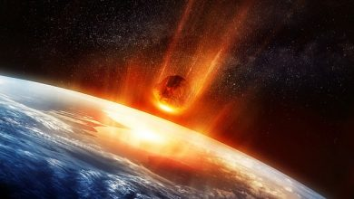 Photo of Chicxulub collision put Earth's crust in hot water for over a million years