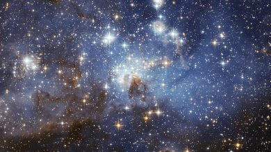 Photo of The star cluster closest to Earth is in its death throes
