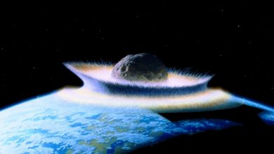 Photo of An asteroid impact.. not volcanism.. may have made Earth unlivable for dinosaurs
