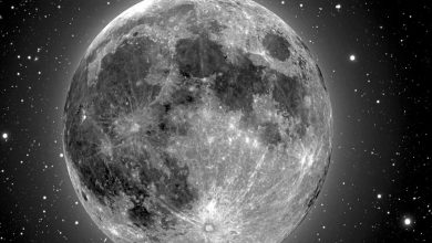 Photo of Higher concentration of metal in Moon's craters provides new insights to its origin